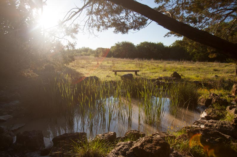 Lotus Ranch | Texas Hill Country Retreat Center | Wimberley, TX